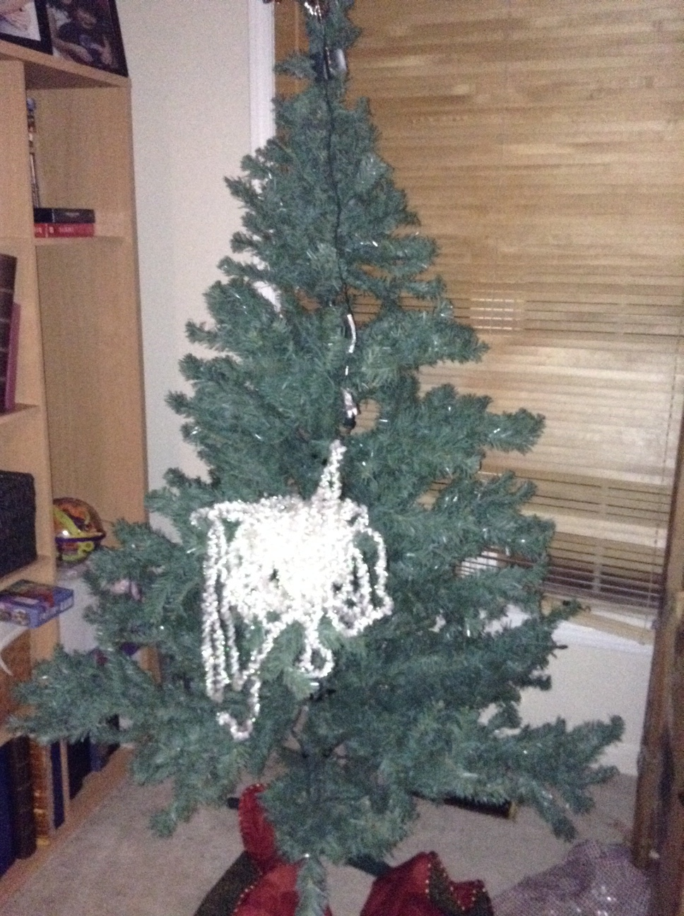 TREE IMG_0517